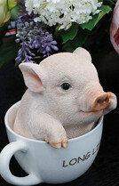 부러운 돼지
