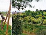 이탈리아의 숨은 진주 '풀리아'