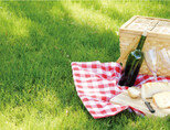 나들이 가기 좋은 봄,  흥 돋워줄 청량한 와인