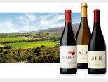산타루시아 하이랜드(SLH) 포도밭과 한 피노 누아르, SLH 샤르도네, SLH 피노 누아르 와인(왼쪽부터). [사진 제공 · ㈜엘비와인]