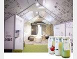흘러내리는 흰 우유를 형상화한 '밀크홀 1937' 종로점 3층의 기둥과 의자. 밀크홀에서 판매하는 병음료들.