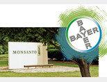 미국 미주리주 세인트루이스 몬산토 본사 앞의 사인보드와 독일 레버쿠젠에 본사를 둔 바이엘의 로고(위). [AP=뉴시스]