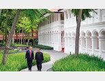 6월 12일 도널드 트럼프 미국 대통령(오른쪽)과 김정은 북한 국무위원장이 업무 오찬을 마친 뒤 싱가포르 카펠라 호텔 내 정원을 통역관 없이 대화하며 산책하고 있다. [사진 제공 · 스트레이츠타임스]