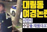 '시민이 수갑채웠다?'…대림동 여경논란