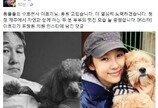 이효리가 표창원 SNS에 댓글을 단 이유