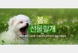 '반려동물 앞장세우고 봄을 즐기세요'