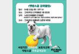 건대 동물병원 '펫맘스쿨' 22일 개최
