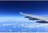 주인이 알아야할 펫과 비행기여행 ABC