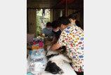 버동수, 폭염에도 남양주 유기동물 보호소로