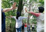 용인자연휴양림 등 4곳서 산림치유 무료 체험