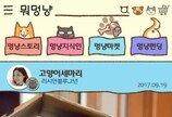 파고다교육그룹 반려동물 앱 '뭐멍냥' 출시