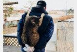 손주인듯 고양이 업어주는 아빠
