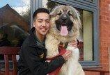 너무 커서 주인 찾지 못하고 있는  강아지