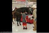 `목줄하면 출입 가능`..말과 함께 쇼핑한 카우보이