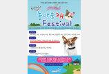 반려동물과 함께하는 '놀아줄개 페스티벌' 9일 통영서 개최