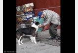 두 손으로 수돗물 받아 개에게 먹인 노인