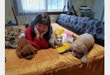'강아지 동생' 장난감 꺼내주는 착한 '고양이 언니'