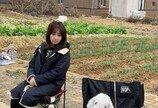 주인이 배우인 강아지의 흔한 사진