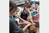 하림펫푸드, 유기견보호소 봉사활동