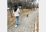 설현, 반려견과 '폭풍질주' 산책
