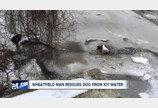 처음 보는 강아지 구하러 얼음물 뛰어든 시민