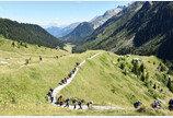 초보서 베테랑까지… 올여름 '유럽의 지붕'을 걷는다