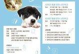 서울시 '반려동물교육센터' 개강..'댕댕이부터 야옹이까지'