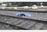 `쫓으면 물려고 해`..기차사고로 숨진 견주 곁 지킨 충견