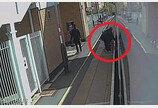 `목줄의 비극`..英 기차 문에 목줄 낀 시추 사고사