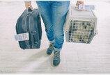 아시아나항공, 단두종 강아지·고양이 위탁 운송 중단