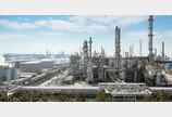 찌꺼기油의 부활… 서산 간척지서 '화학산업의 쌀' 생산