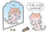 고양이에게는 너무 소중한 수염