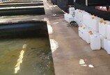 광어양식에 발암물질 공업용 포르말린 사용 양식업자 '집행유예'