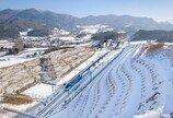 설연휴, 250만명 열차 이용…전년비 12.2%증가