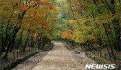 조선왕릉이 살아았다, 단풍철 문화나들이 7곳