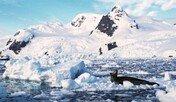 행운과 불운이 눈과 얼음산에 덮인 곳… 의지의 땅이 유혹하다