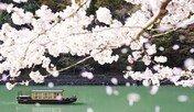 일본 료칸도 올인클루시브가 뜬다…온천여행 트렌드 3가지
