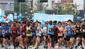 10월 '3색 동아마라톤'달리는 기쁨, 고르는 재미