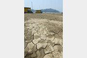 [변영욱의 공정한 이미지] 누가 봐도 연출인 가뭄 사진