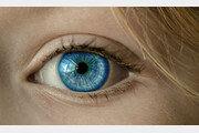 60대 여성 눈에 콘택트렌즈 27장이 겹겹이…의료진 '경악'