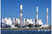 환경-효율 모두 외면한 '막무가내 脫석탄 정책'