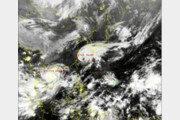 태풍 탈림 영향, 제주에 강풍·비 …태풍 경로, 예상대로 日 규슈로