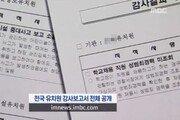 """""""원비받아 성인용품""""… 비리 유치원 명단에 부글부글, 靑 청원도"""