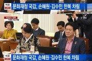 """손혜원·김수민, 국감장에 개량한복 입고 등장?…""""효과적 질문방식"""" 호평도"""