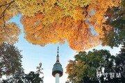 파란 하늘 물들인 남산의 가을