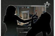 """""""'선릉역 칼부림' 사건 가해女, 흉기 계획소지 가능성 배제 어려워"""""""