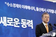 文대통령 지지율, '손혜원 논란'에 상승세 멈춰…49.1%