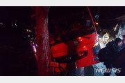 남해 관광버스 고양이 피하려다 가로수 충돌…44명 경상