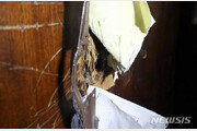 국회 사개특위, 여야 밤샘 육탄전…기습 개의했으나 실패