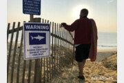 美 하와이에서 상어 공격으로 수영하던 남성 사망